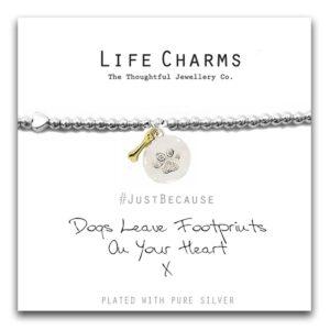 Lie Charms Bracelet