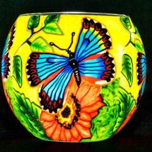 Butterfly Beauty Light